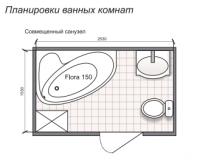 Планировка ванной комнаты с Domani-Spa Flora 150 (чертеж совмещенный санузел)